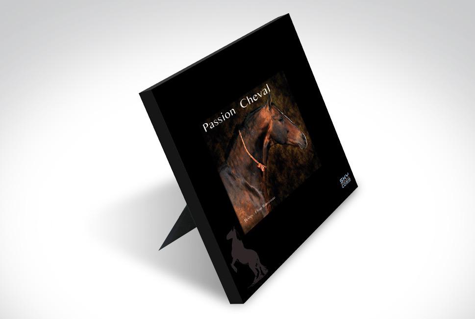 Livre chevalet sur les chevaux, photographie d'art et textes explicatifs.